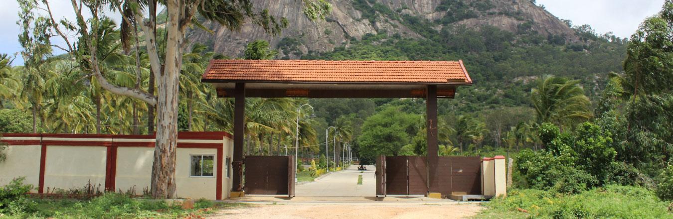 pavilion-banner